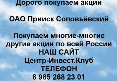 Покупка акций ОАО Прииск Соловьёвский