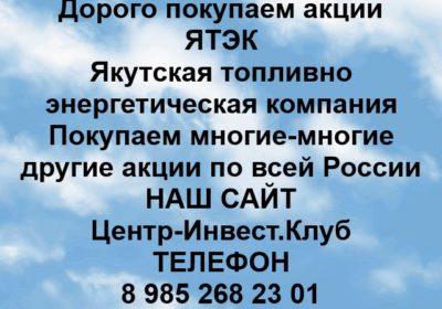 Покупка акций Якутская топливно-энергетическая ком